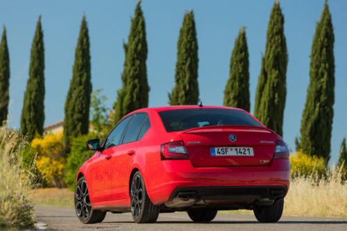 SKODA OCTAVIA RS 245 76-jpg