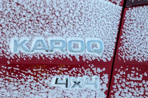 KAROQ 4X4 2018 12-jpg