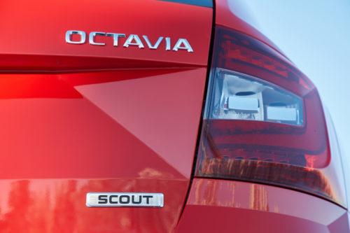 OCTAVIA Scout 2018 20-jpg